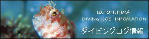 伊豆大島ダイビングログ情報