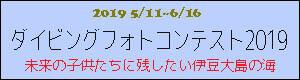 2019伊豆大島ダイビングフォトコンテスト