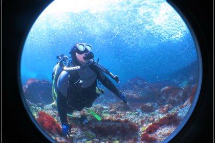 キラキラの世界を眺める体験ダイビング