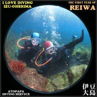 伊豆大島で体験ダイビング