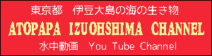 atopapaizuohshima-youtubechannel