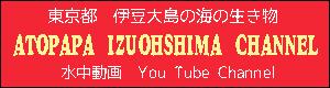 atopapaizuohshima-youtubechannel